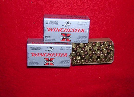 rimfire bullet. ammunition count 22+rifle+